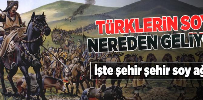 Türklerin soyu nereden geliyor? Şehir şehir Türklerin soy ağacı