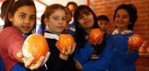 Bakan Koca, okullardaki beslenme sağlığına önem verdiklerini ve herkesin sağlık hakkının korunduğu açıkladı