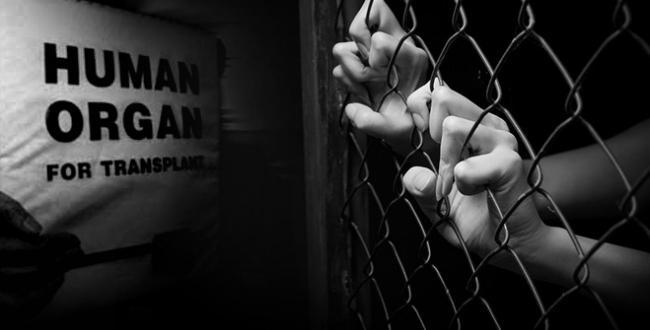 Dünyada 40 milyondan fazla, insan ticareti mağduru var