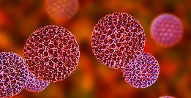 Rota virüsü çocuklarda ölümcül sonuçlara neden olabilecek kadar tehlikeli