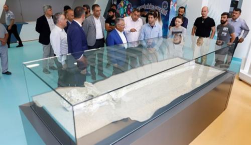 Taşhan mevkisinde yapılan kazılarda çıkarılan 7,5 milyon yıllık fosilleri görmek için Kayseri'ye geldi