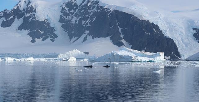 kutup bölgelerinde son manyetik alan yer değişiminin 22 bin yıl sürdüğü açıklandı