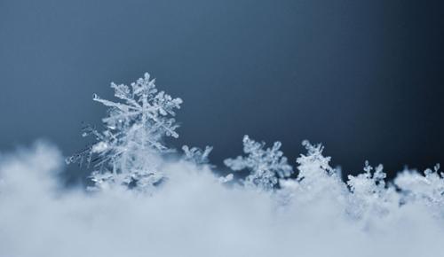 Havadaki plastik parçacıklarının, kar tanelerine karışarak yeryüzüne düştüğü tespit edildi