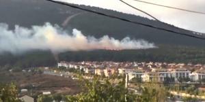 İstanbul'da  ormanlık alanda çıkan yangın kontrol altına alındı