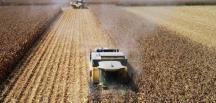 Yeni sözleşme yapılan çiftçilere de avansları 20 Mayıs'ta ödenecek
