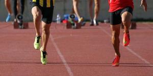 Türkiye Atletizm Federasyonu seminer düzenleyecek