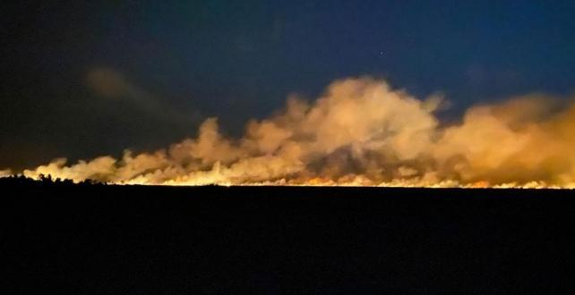 Samsun'un Terme ilçesinde sazlık alanda Yangın