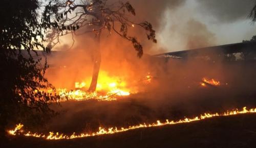 Mersin'de araştırma enstitüsünde yangın