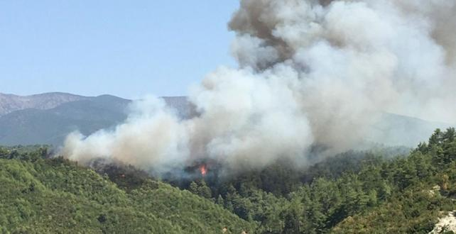 Hatay'da orman yangını 3 yerleşim yerini tehdit ediyor