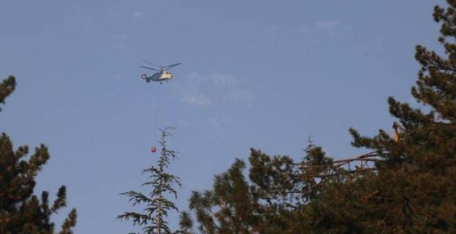Adana'daki orman yangınına müdahale tekrar başladı
