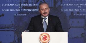 TBMM Başkanı Şentop: Türkiye maddi, manevi bütün gücüyle Azerbaycan'ın yanındadır