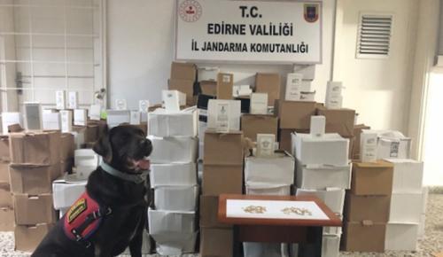 Edirne'de 7 bin 391 kaçak parfüm ele geçirildi