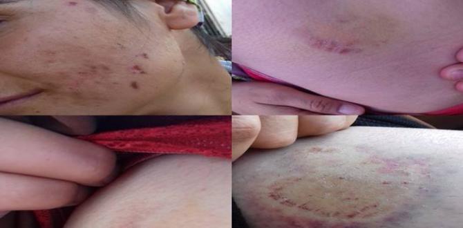 Şanlıurfa'da Bir kadın çocuğuyla birlikte acımasızca darp edildi