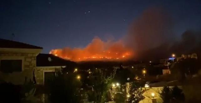 Foça'da çöp depolama alanında çıkan yangın ormana sıçradı