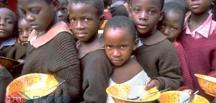 Nijerya'da 9,8 milyon kişi açlık tehlikesi altında