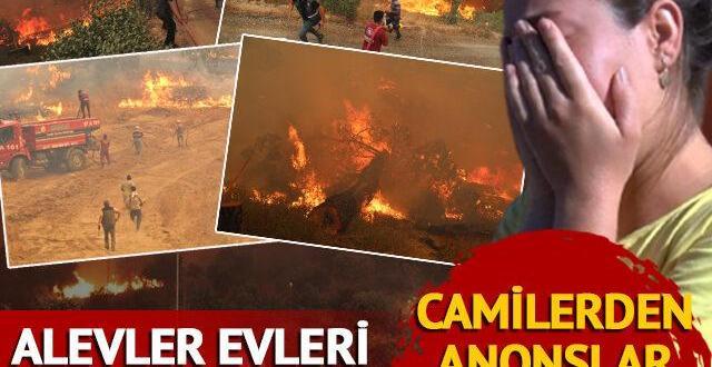Adana, Denizli, Isparta, Marmaris, Köyceğiz, Milas, Bodrum, Manavgat'ta orman yangını! İşte yangınlardaki son durum