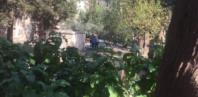Urfa'da Tarihi Cami Mezarlığında Uyuşturucu Madde Ticareti